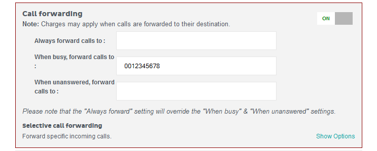 Call forwarding settings screenshot